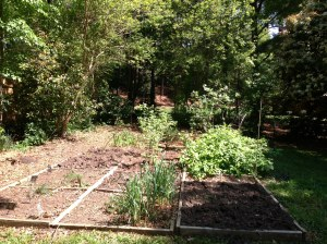 Beds have new blueberry and blackberry bushes.  Bring on the tomatoes!